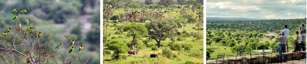 ZanTours Untouched Tanzania Day 7