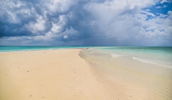 Zanzibar Excursion ZanTours
