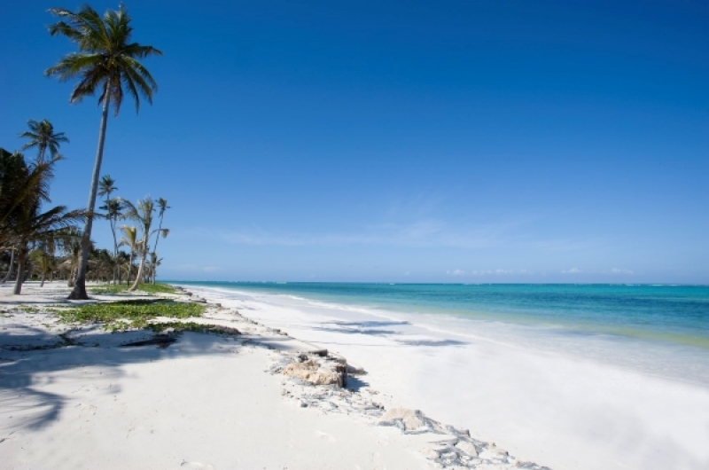Zanzibar Bwejuu