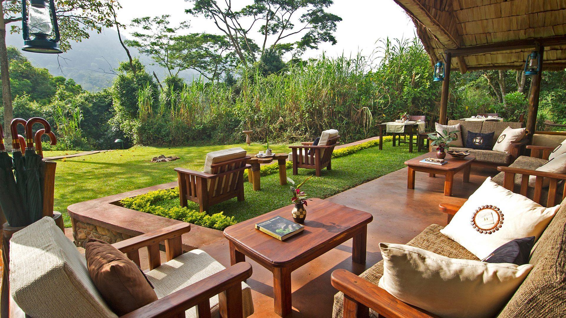 Sanctuary Gorilla Forest Cam