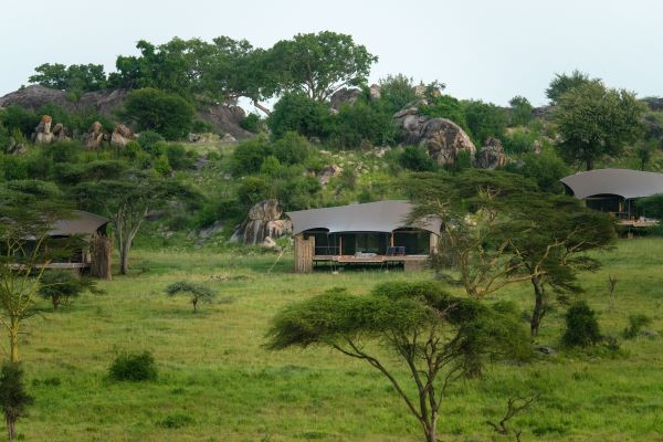 Lemala Nanyukie Serengeti