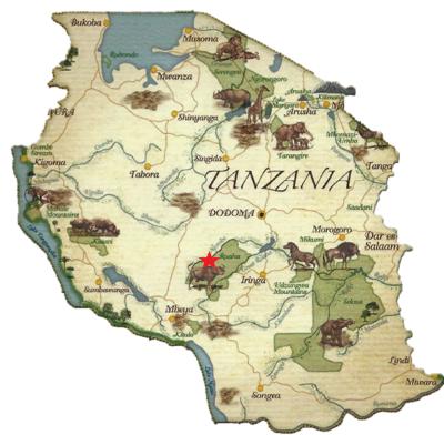 Ruaha Tanzania