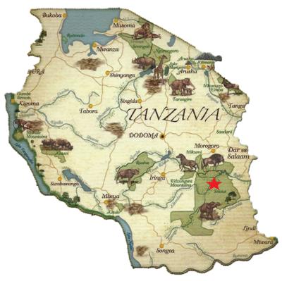 Selous Tanzania